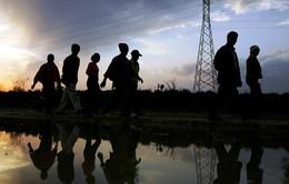 Bang California (Mỹ) soạn thảo dự luật bảo vệ người nhập cư