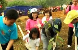 Việt Nam - Nhật Bản phối hợp trồng rừng tại VQG Ba Vì