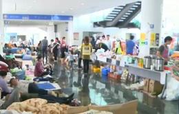 Người dân Nhật Bản mắc bệnh vì điều kiện sống khó khăn sau động đất