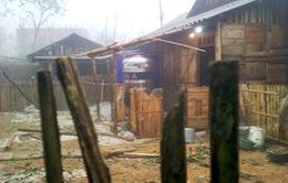 Gió mạnh cấp 7-8 gây nhiều thiệt hại tại Lào Cai
