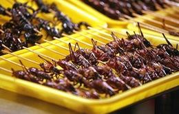 """Ẩm thực côn trùng, bò sát """"lên ngôi"""""""