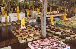 Khám phá văn hóa chợ cá Nhật Bản