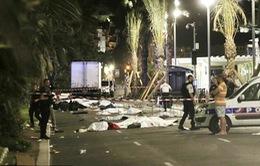 Pháp, Bỉ phá vỡ nhiều âm mưu khủng bố