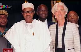 Nigeria kêu gọi cứu trợ khẩn cấp do giá dầu giảm