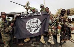 Nigeria giành quyền kiểm soát khu trại chủ chốt của Boko Haram