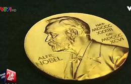 Giải Nobel và chỗ đứng trong thế kỉ 21