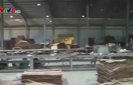Tạm đình chỉ công ty xảy ra vụ nổ làm 11 người bị thương
