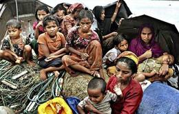 Thái Lan: Phá đường dây buôn người từ Myanmar