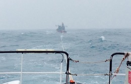 Tiếp tục tìm kiếm 4 ngư dân mất tích ở Quảng Ngãi