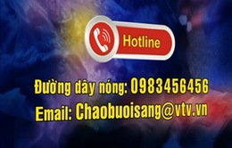 Đường dây nóng của Ban Thời sự, Đài THVN tiếp nhận 500 - 600 cuộc gọi mỗi ngày