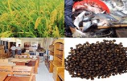 Nông sản xuất khẩu giảm giá mạnh