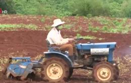 Lâm Đồng: Khó khăn về cơ giới hóa nông nghiệp