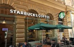 Starbuck, Amazon nộp thuế ít hơn cả xe bán xúc xích lề đường