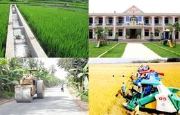 Ban Bí thư ban hành Chỉ thị về xây dựng nông thôn mới và đô thị thông minh