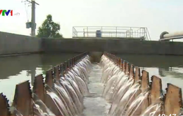 Hơn 200.000 người dân Kiên Giang thiếu nước sạch