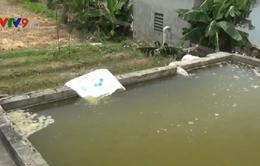 Nghệ An: Nhà máy nước sạch cung cấp nước đổi màu, mùi hôi