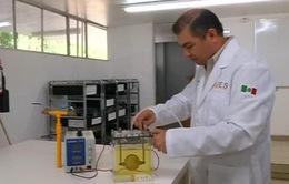 Thiết bị biến nước tiểu thành khí biogas