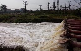 ĐBSCL cần tranh thủ lấy nước phục vụ sản xuất