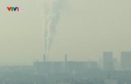 Thế giới kêu gọi loại bỏ khí nhà kính có hại