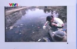 80% mẫu nước vùng nông thôn Đông Bắc Trung Quốc ô nhiễm nặng