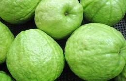 Đây là loại trái cây nói không với thuốc bảo vệ thực vật, thuốc diệt cỏ