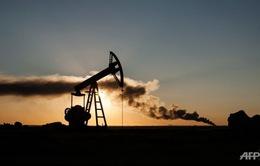 Giá dầu châu Á tăng cao nhất 6 tuần sau quyết định cắt giảm sản lượng của OPEC