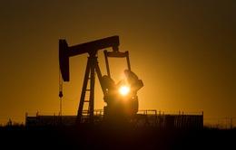 """Giá dầu thế giới tăng do nỗ lực """"đóng băng"""" sản lượng"""