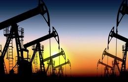 Iran xuất khẩu dầu đạt mức cao nhất trong 4 năm qua