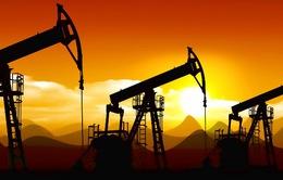 Giá dầu châu Á sụt giảm do lo ngại dư cung