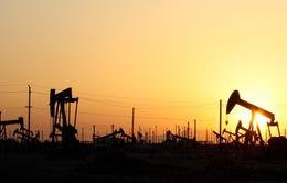 Nga - Saudi Arabia hợp tác ổn định thị trường dầu mỏ