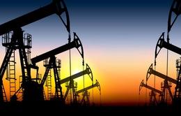 Giá dầu đột ngột đi xuống bất chấp thỏa thuận cắt giảm sản lượng