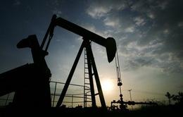 Các nước sản xuất dầu họp bàn về sản lượng