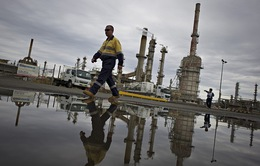 Saudi Arabia không giảm sản lượng, giá dầu tiếp tục lao dốc