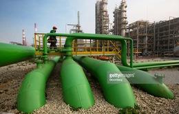 OPEC: Thị trường dầu mỏ sẽ ổn định trong năm 2017
