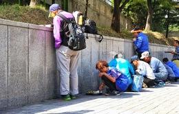 Một nửa số người già Hàn Quốc sống trong cảnh nghèo đói