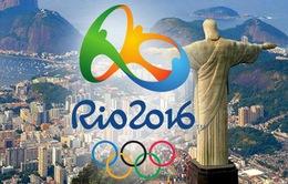 Brazil hạ nguy cơ lây lan từ virus Zika tại Olympic 2016