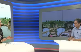 Công ty xả thải gây chết cá hàng loạt trên sông Bưởi: Vi phạm rất nghiêm trọng!