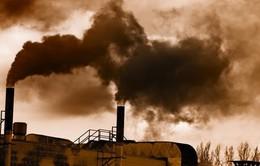 80% cư dân thành thị hít thở không khí ô nhiễm