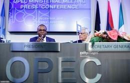 OPEC khó cắt giảm sản lượng do bất đồng nội bộ