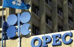 OPEC bất ngờ cắt giảm sản lượng lần đầu tiên sau 8 năm