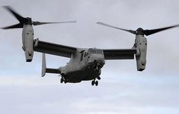 Mỹ đình chỉ hoạt động của máy bay Osprey tại Nhật Bản
