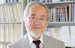 Nhà khoa học người Nhật Bản đoạt giải Nobel Y học năm 2016