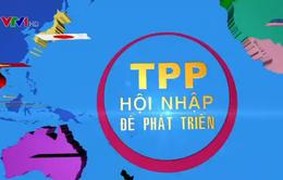 Việt Nam đã chủ động cải cách thể chế trước khi ký kết Hiệp định TPP