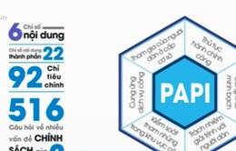 Cung ứng dịch vụ công - chỉ số PAPI duy nhất có dấu hiệu tích cực