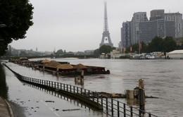 Ngập lụt tại Pháp: Mực nước có thể dâng cao tới gần 6m
