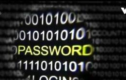 Hơn 270 triệu tài khoản email bị đánh cắp và rao bán tại Nga