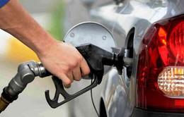 Nghệ An: 123 cửa hàng xăng dầu chưa đủ điều kiện kinh doanh