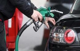 Ấn Độ giảm giá nhiên liệu trong cuộc khủng hoảng tiền mặt