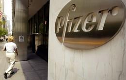Pfizer hủy hợp đồng mua lại Allergan