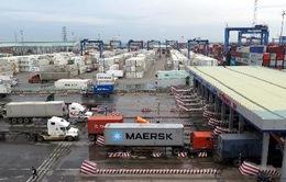 Thực hiện giám sát bằng camera tại cảng Cát Lái